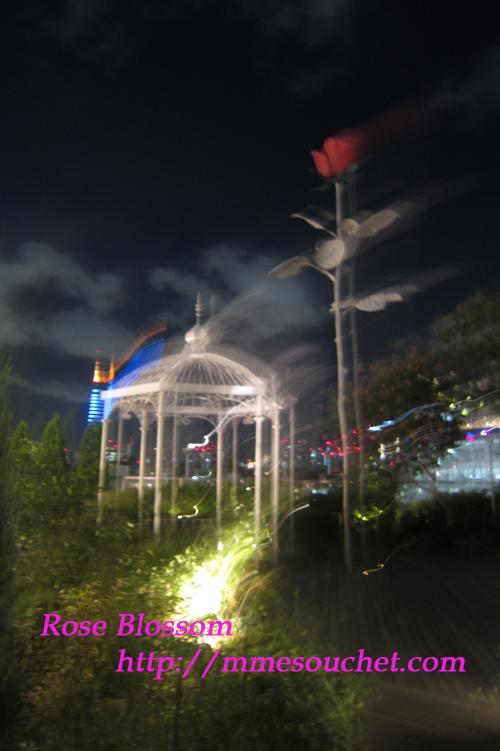 201109163.jpg