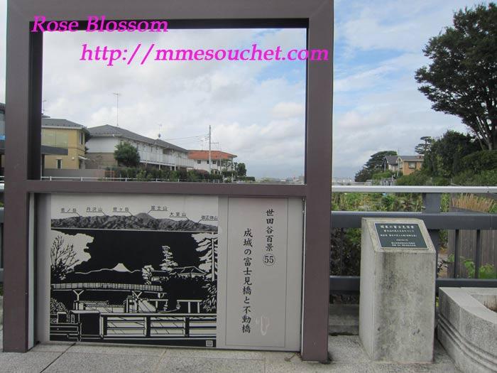 20fujimibashi201109011.jpg