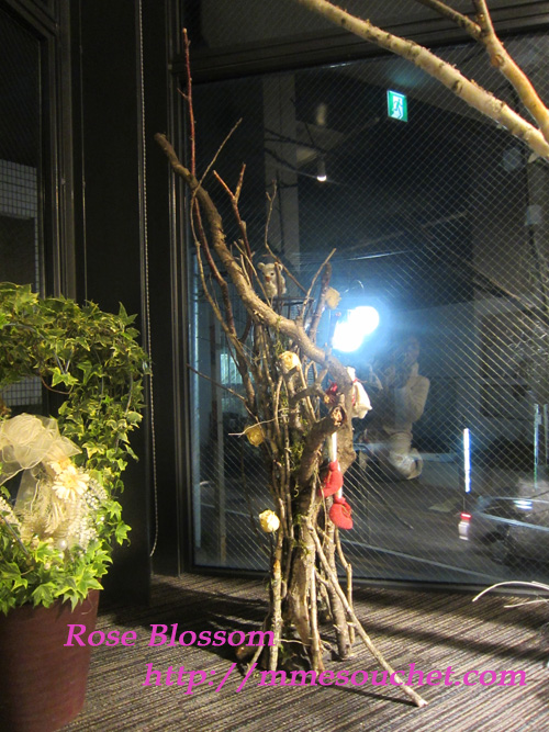 arekaruizawa20111218.jpg