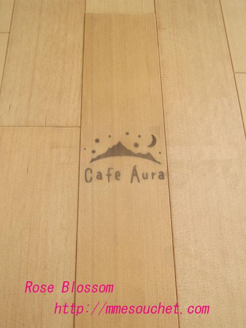 auradoor20120410.jpg