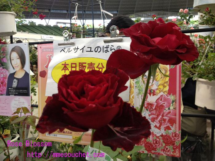 berubara20120513.jpg