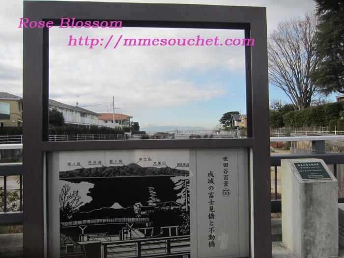 board20120106.jpg
