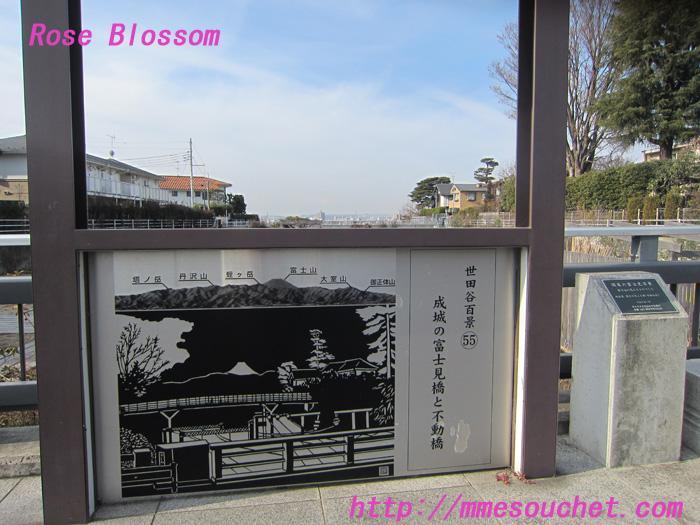 board20120119.jpg