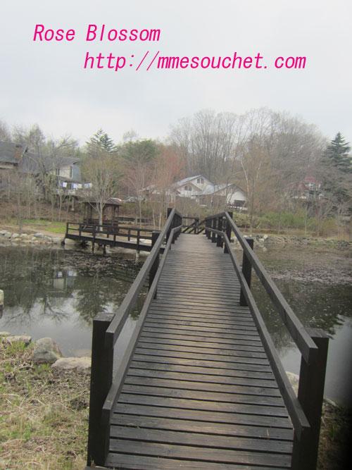 bridge20120430.jpg