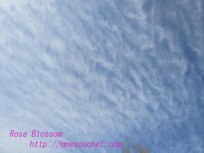 clouds20130209.jpg
