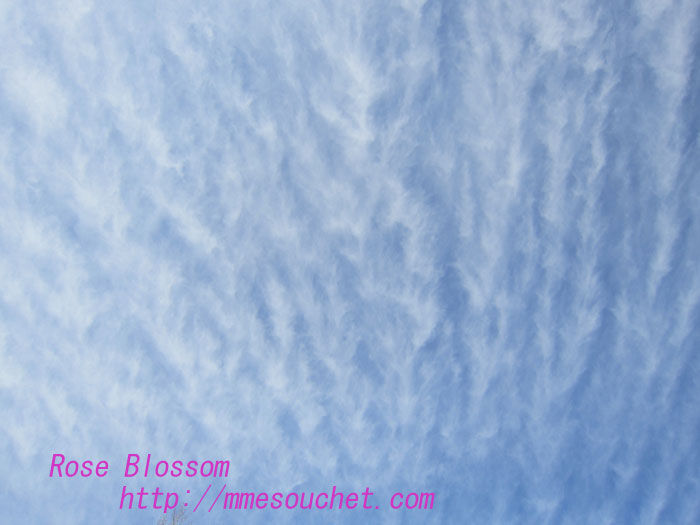 clouds201302091.jpg