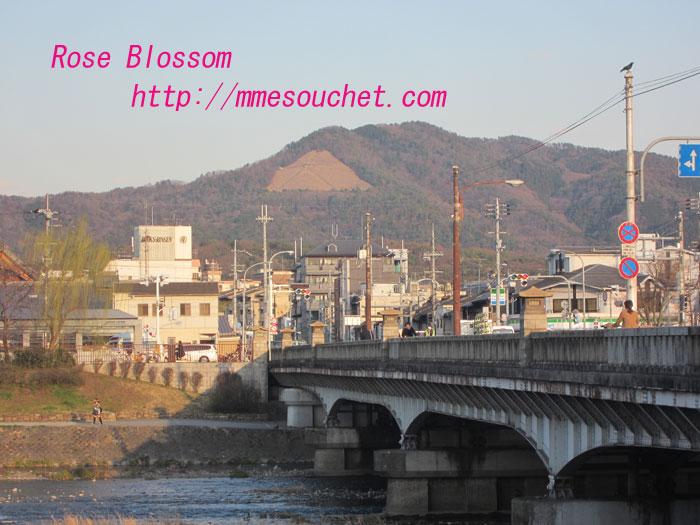 daiminji20120314.jpg