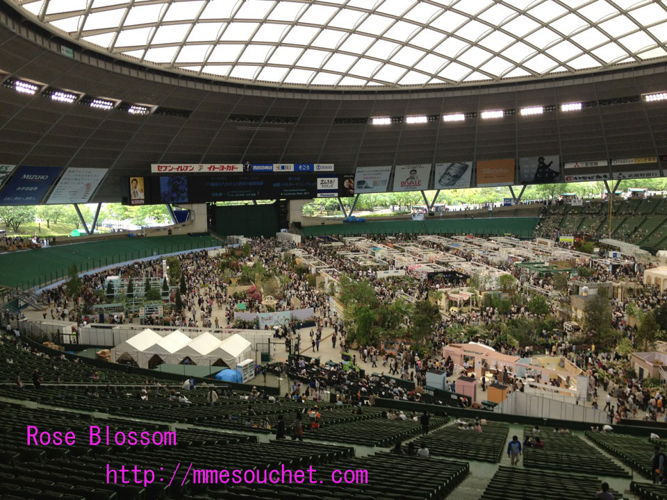 dome20120513.jpg