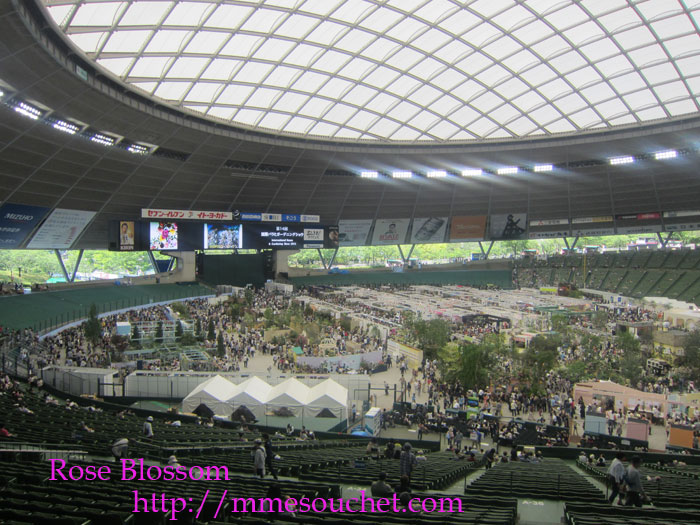 dome20120519.jpg