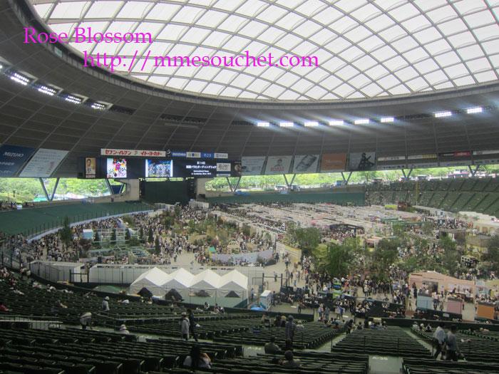 dome20120520.jpg