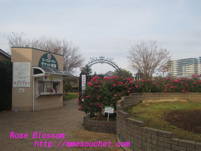 entrance20121202.jpg