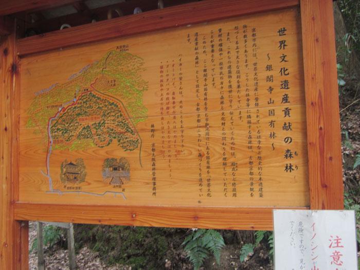 forest20120314.jpg