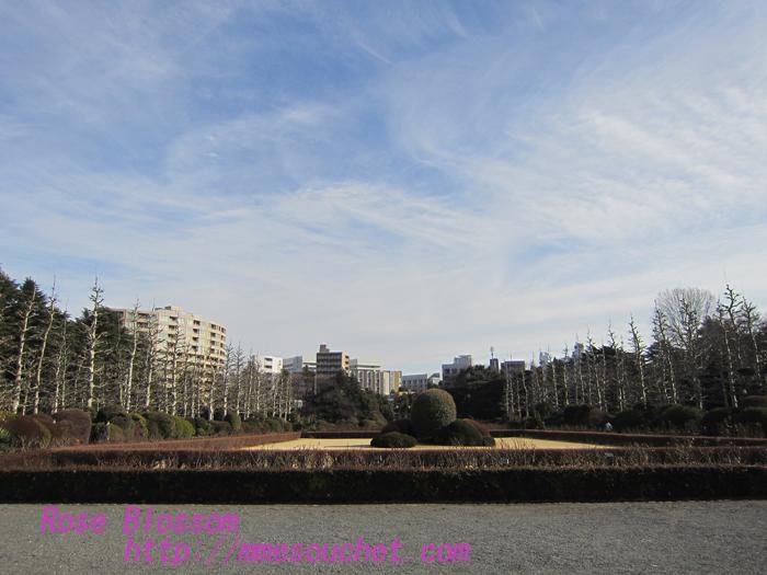 franceg20130202.jpg