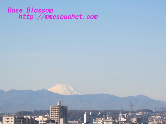 fuji20121205.jpg