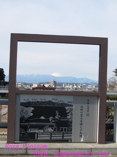 fuji20130217.jpg