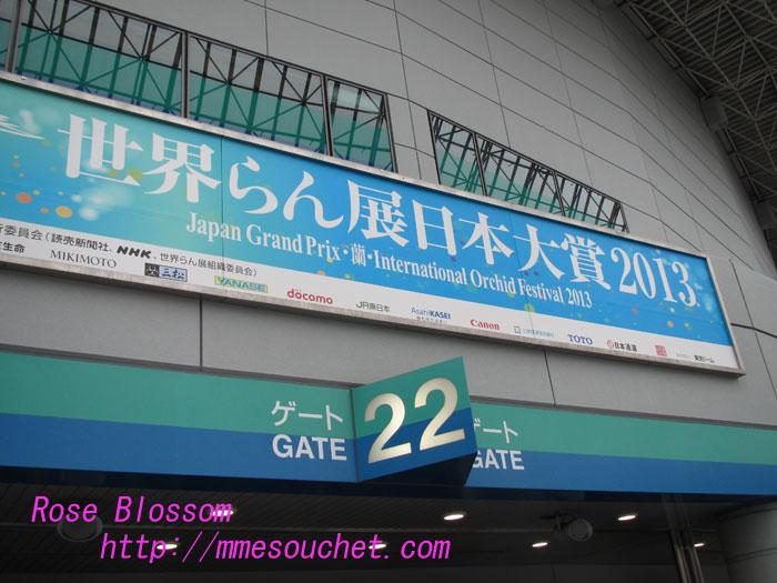 gatebig20130219.jpg