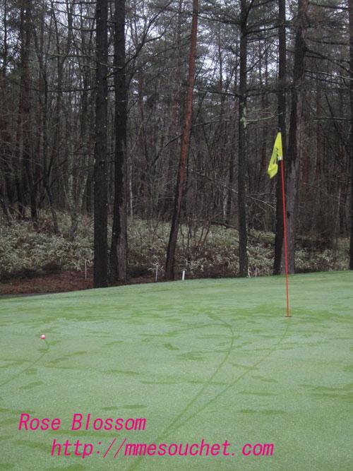 golf20120428.jpg