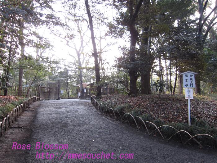 gyoen20130122.jpg