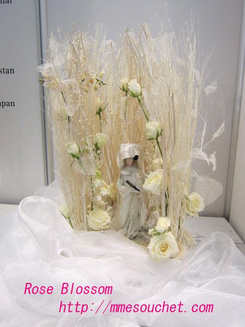 hanayome20120127.jpg