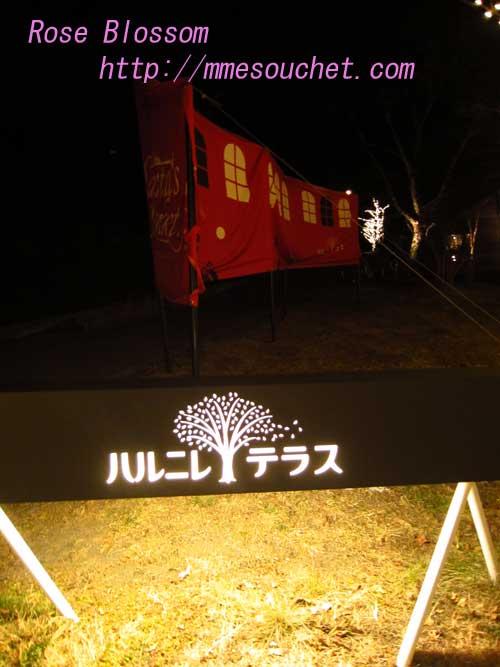 harunire20121212.jpg