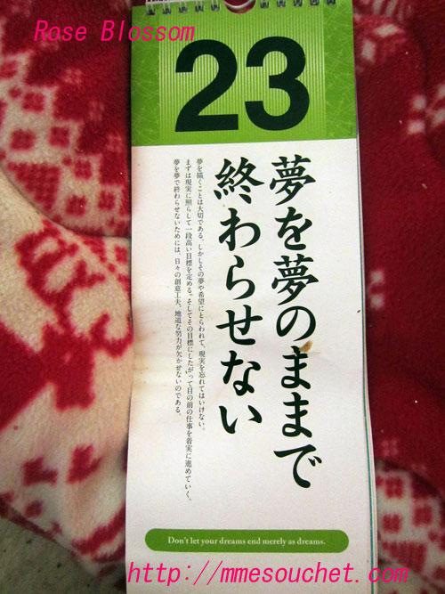 himekuri20111123.jpg