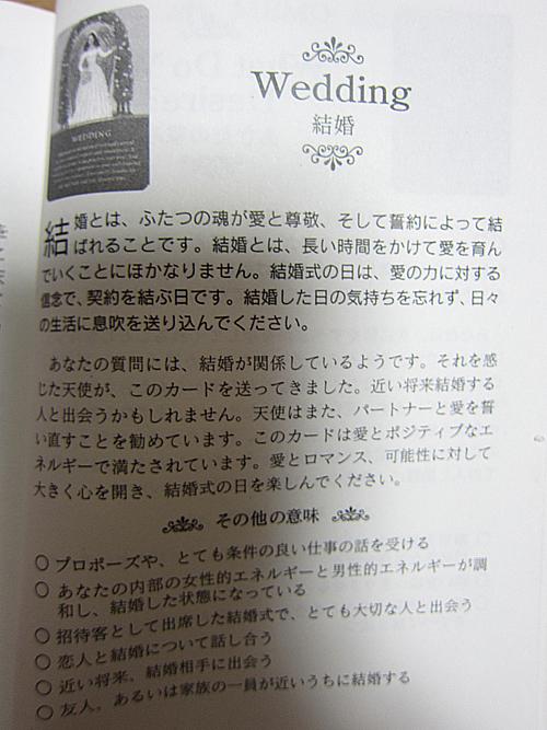 imi20111101.jpg