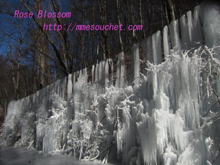 jyuhyu201112281.jpg