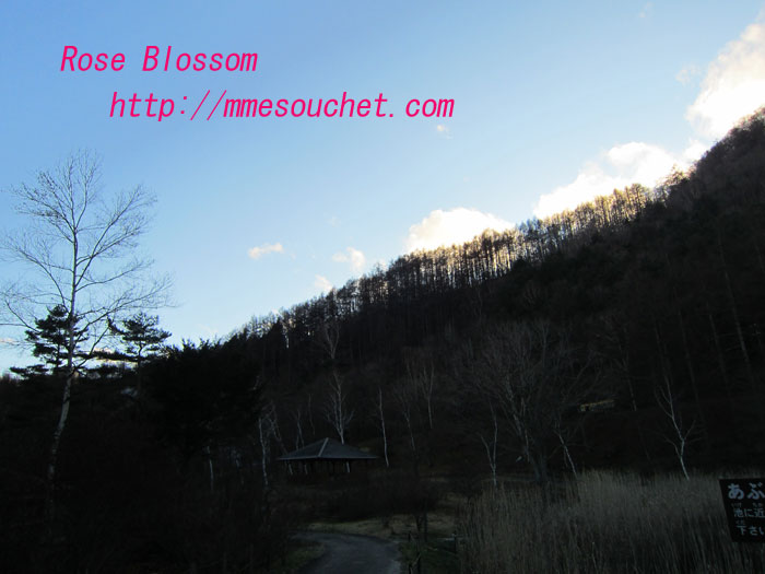 k201111241.jpg
