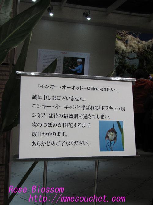 kotowari20130219.jpg