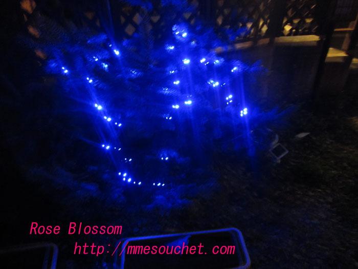 light20111122.jpg