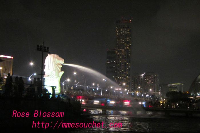mar20111001.jpg