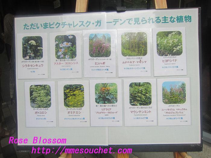 menu20120901.jpg