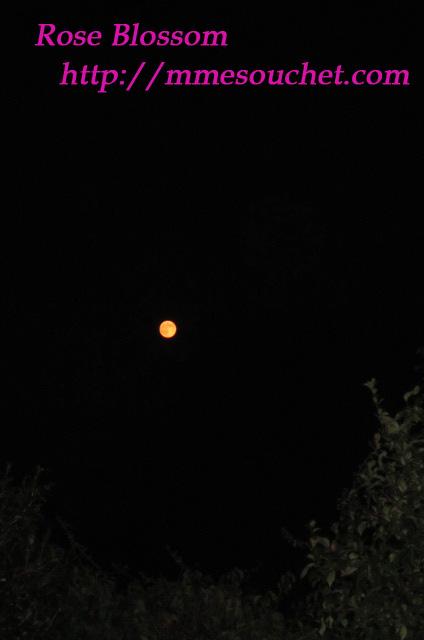 moon20111012.jpg