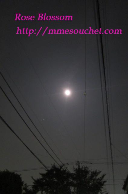 moon201110121.jpg