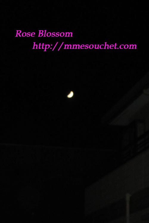 moon2011103.jpg