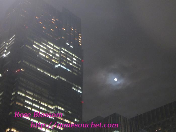 moon20111110.jpg