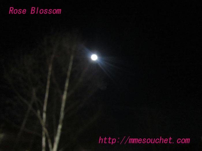 moon20120107.jpg