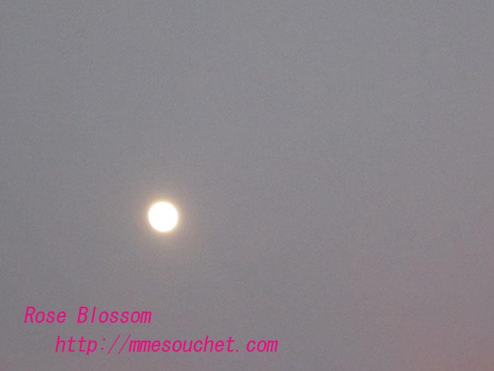 moon20120108.jpg