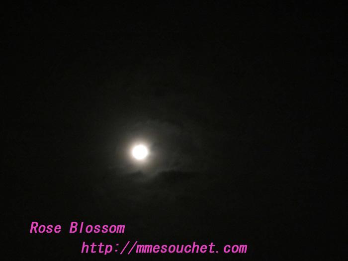 moon20120110.jpg