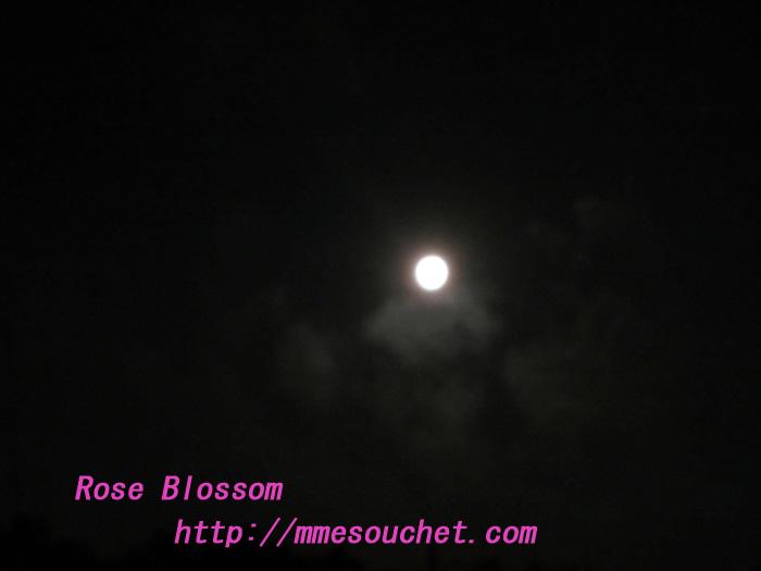 moon20120111.jpg