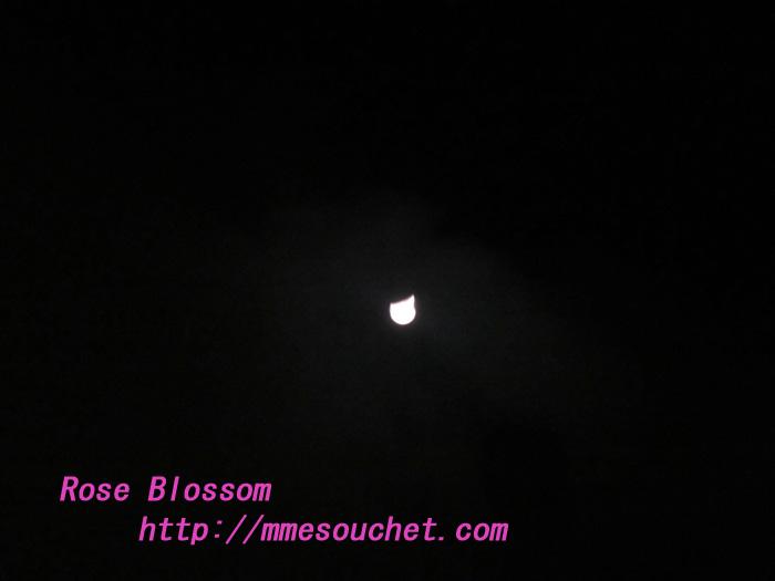 moon20120130.jpg