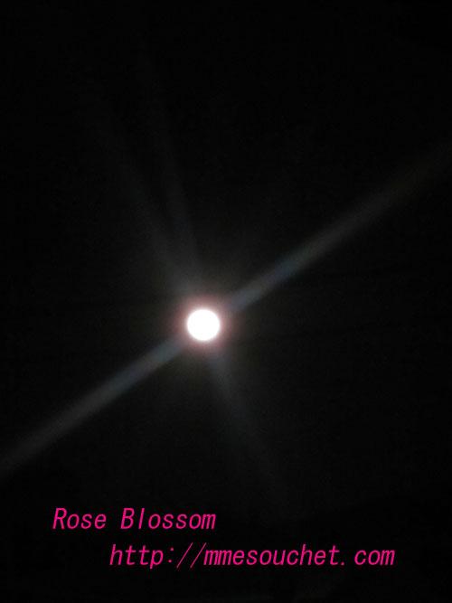 moon20120208.jpg