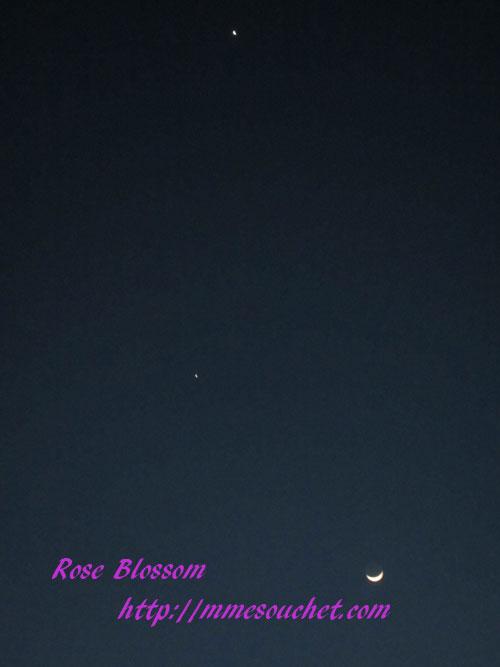 moon20120325.jpg