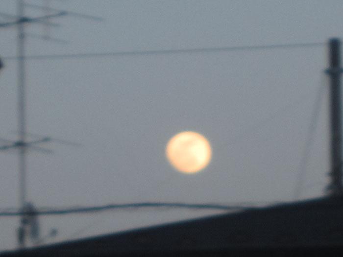 moon20120505.jpg