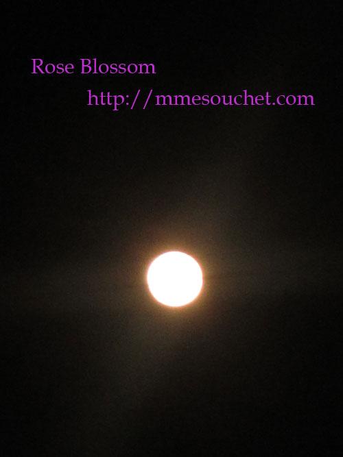 moon20120506.jpg