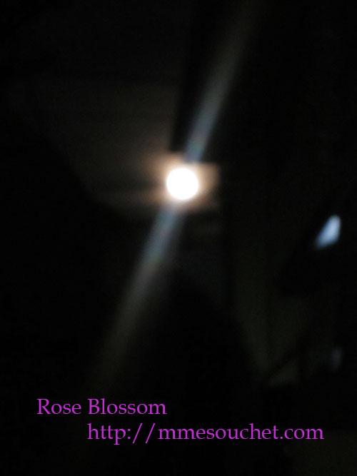 moon201206062.jpg