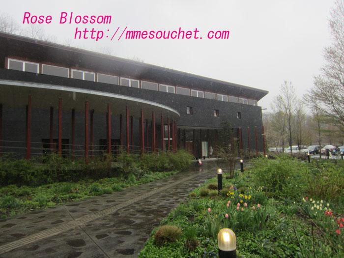 muze201205021.jpg