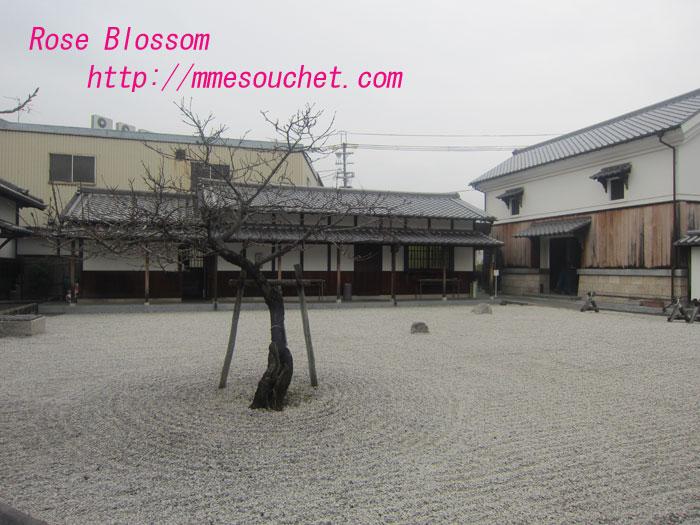 niwa20120318.jpg