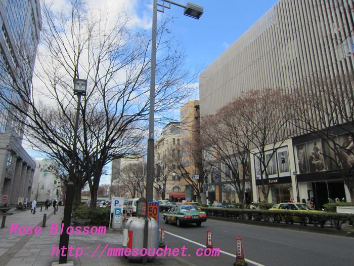 omotesando20120114.jpg