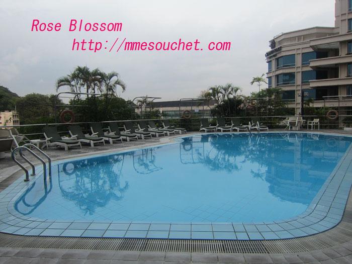 pool201112071.jpg
